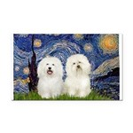 Starry Night / 2 Bolognese Rectangle Car Magnet