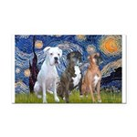 Starry / 3 Boxers Rectangle Car Magnet