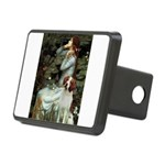 Ophelia /Brittany S Rectangular Hitch Cover
