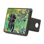 Irises / Cairn (#17) Rectangular Hitch Cover