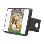 Spring & Cavalier Rectangular Hitch Cover