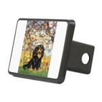 Spring & Cavalier (BT) Rectangular Hitch Cover