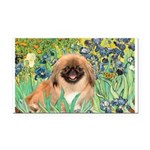 Irises / Pekingese(r&w) Rectangle Car Magnet