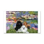 Lilies / 3 Poodles Rectangle Car Magnet