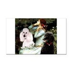 Ophelia / Poodle pair Rectangle Car Magnet