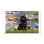 Lilies (2) & Schipperke Rectangle Car Magnet