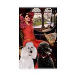 Accolade / G Schnauzer 5x7 Flat Cards
