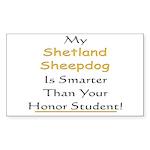 Starry / Shih Tzu (p) 5.5 x 7.5 Flat Cards
