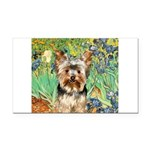 IRISES / Yorkie (17) Rectangle Car Magnet