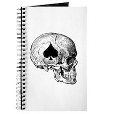 Ace of Spades VN-1 Journal