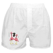 Flamingo Fun Boxer Shorts