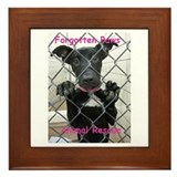 Forgotten Paws Framed Tile