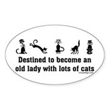 Cat Woman Oval Decal
