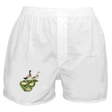 Welsh Harlequin Duck Family Boxer Shorts