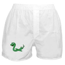 Cute Snake on a plane Boxer Shorts