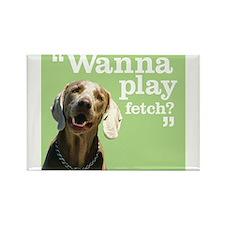 Fetch Dog Rectangle Magnet