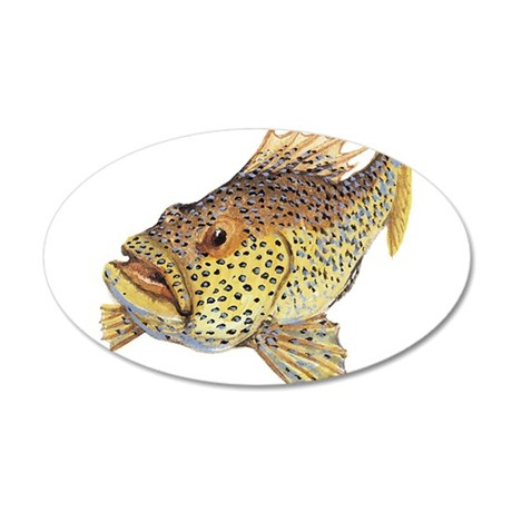 Coney fish 20x12 Oval Wall Decal
