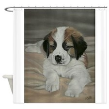 saint bernard puppy Shower Curtain
