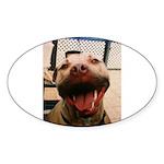 DCK the RedNose american pitbull terrier Sticker (