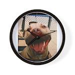 DCK the RedNose american pitbull terrier Wall Cloc