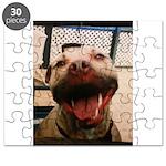 DCK the RedNose american pitbull terrier Puzzle
