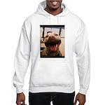 DCK the RedNose american pitbull terrier Hooded Sw