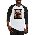 DCK the RedNose american pitbull terrier Baseball