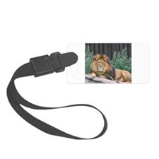 Male Body Full Body Luggage Tag