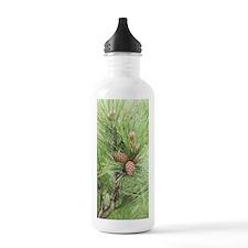 Pine Cones Water Bottle