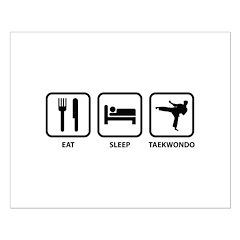 Eat Sleep Taekwondo Posters