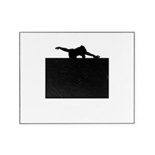 The Flying Squirrel - Picture Frame