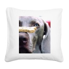 Got Cookie? Square Canvas Pillow