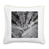 Silver Fern in the Otways Square Canvas Pillow