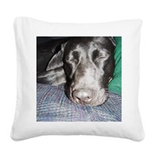 sleeping lab Square Canvas Pillow