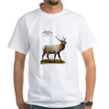 Rocky Mountain Elk Shirt