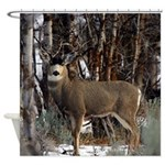 Buck deer Shower Curtain