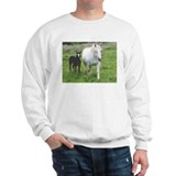 Colt and Horse Love  Sweatshirt