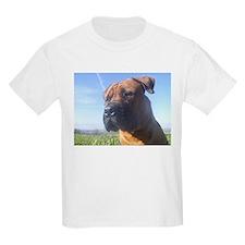 Boerboel's do it better! T-Shirt