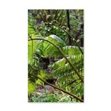 Rainforest Ferns - Wall Decal