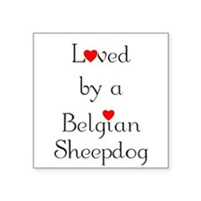 "lovedbelgsheep.png Square Sticker 3"" x 3"""