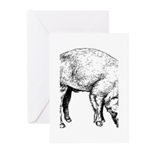 Piggy Greeting Cards (Pk of 10)
