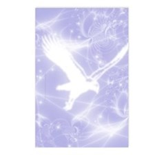 Spirit Hawk Postcards (Package of 8)
