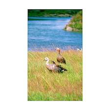 Pond scene Business Card Case