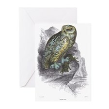 Snowy Owl Bird Greeting Cards (Pk of 10)