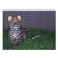 Wild Cats Wall Calendar