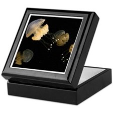 4 Spotted Jellies Keepsake Box