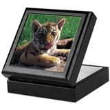 Baby Tiger Keepsake Box