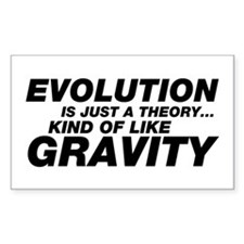 Evolution Just a Theory Decal