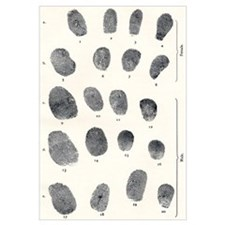 Sets of fingerprints