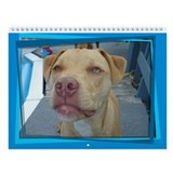 Pit Bull Luv Wall Calendar